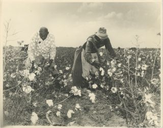 A Series of Five Photographs taken by Prentice Polk, c. 1930s. African-Americana, Prentice H. Polk