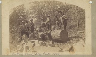 Cutting Wood, Sly Park, 1882. [Caption Title]. California, Photography